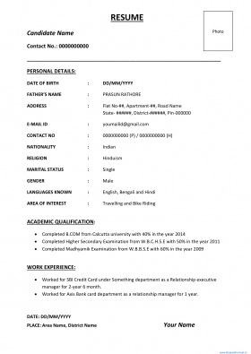 Best and Simple resume and biodata format 15