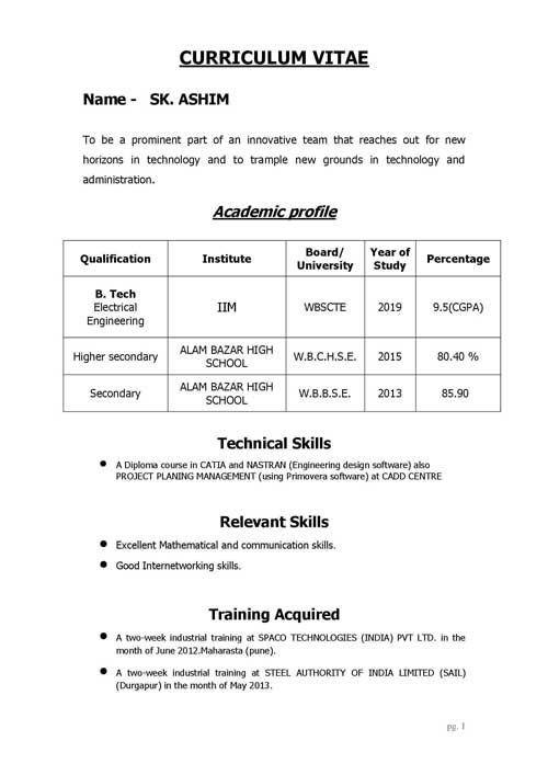 Resume or Biodata format for technical qualification candidate